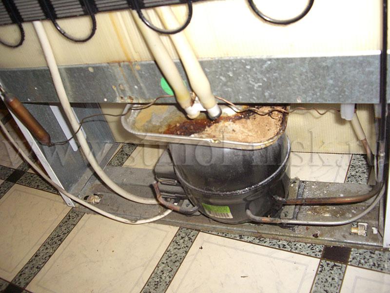 Своими руками ремонт холодильника стинол 101 21